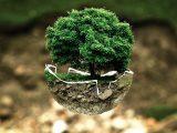 Ecologia e riciclo